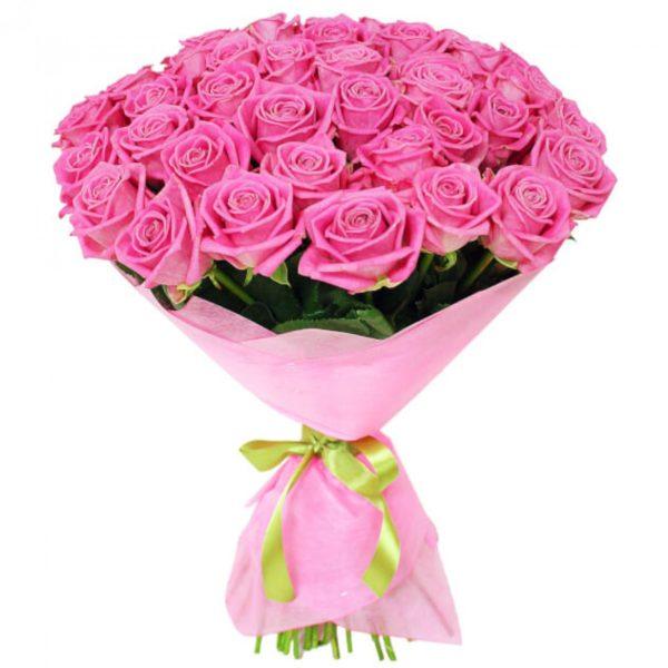 51 розовая роза Кубанская