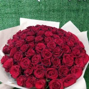 101 кубанская роза