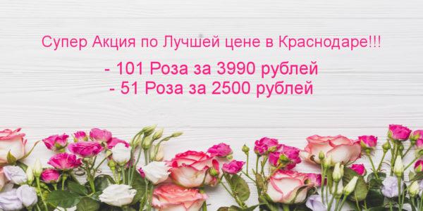 банер-101